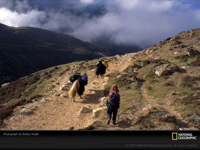 Nepali-sherpa-girl-640558-sw